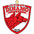 Dinamo Bucuresti badge