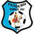 Pandurii badge