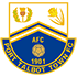 Port Talbot Town badge