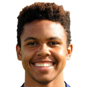 Weston McKennie of Schalke